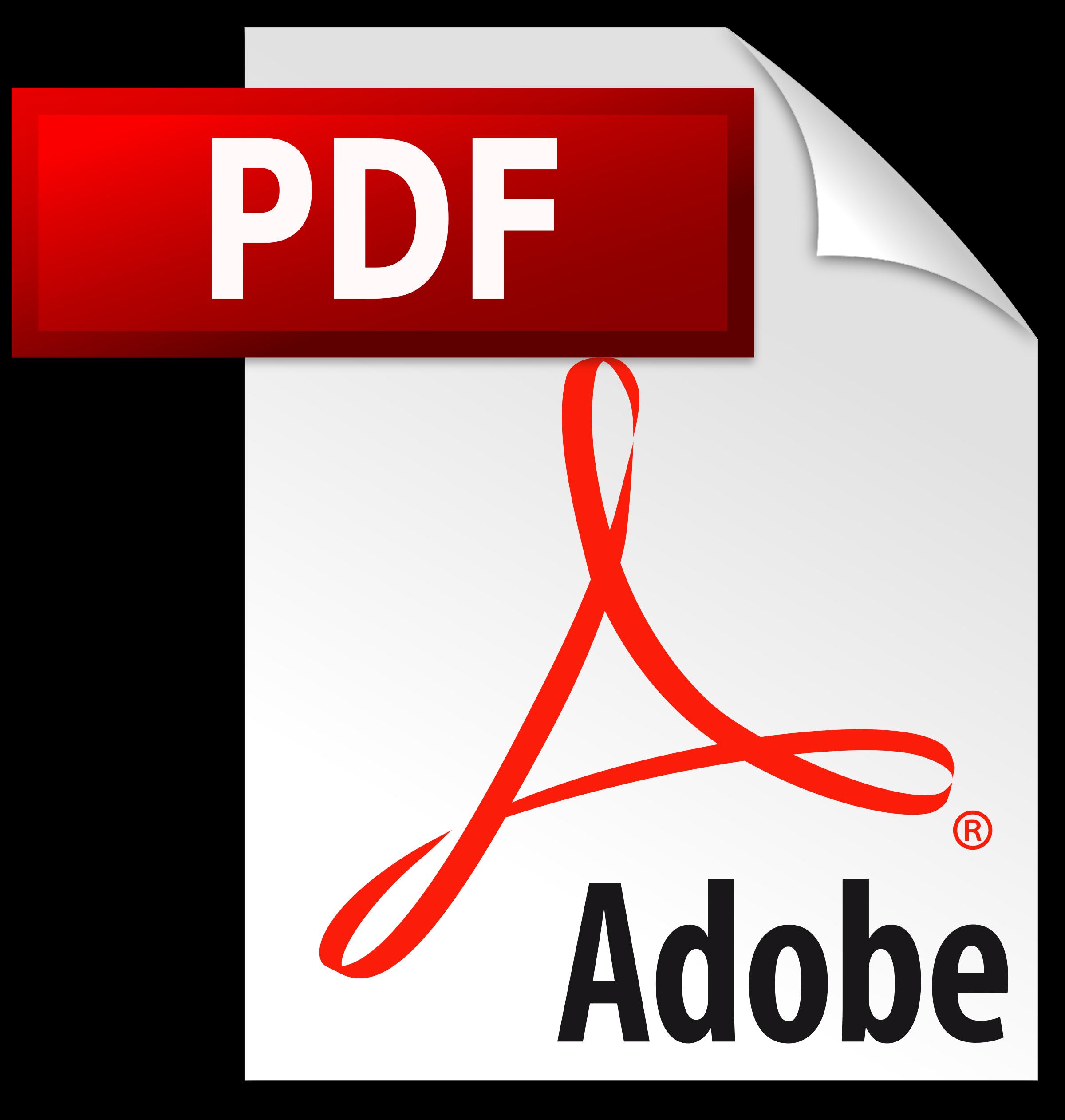 نوع الملف pdf